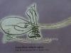 ikinci-selimin-tugrasi
